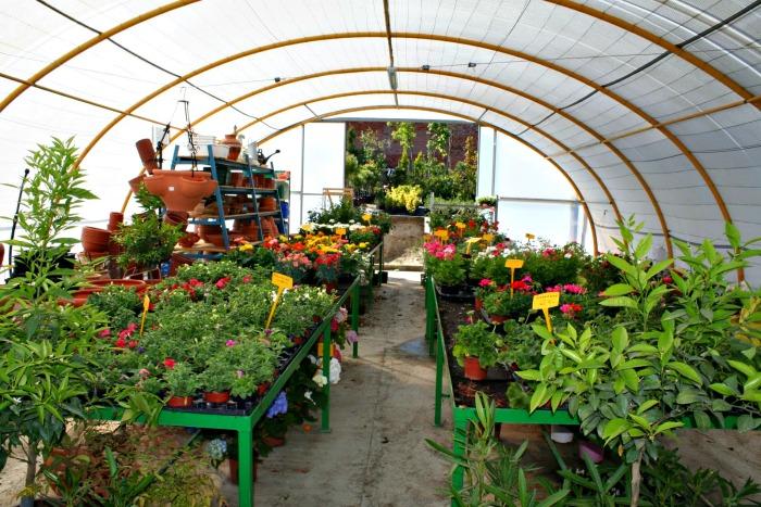 cursos horticultura
