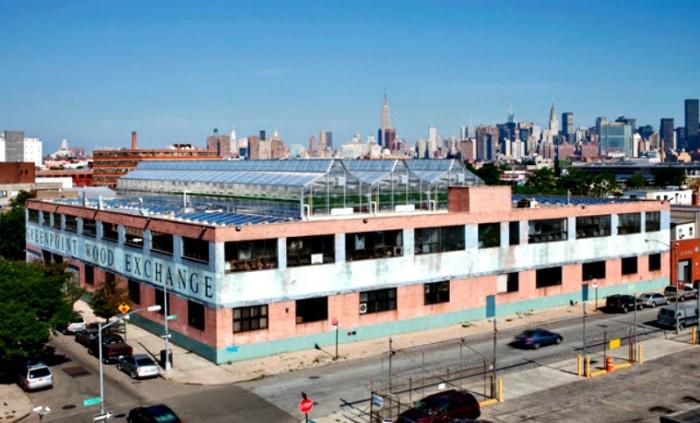 agricultura urbana nueva york