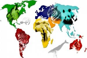 15 especies en peligro de extinci243n que t250 conoces