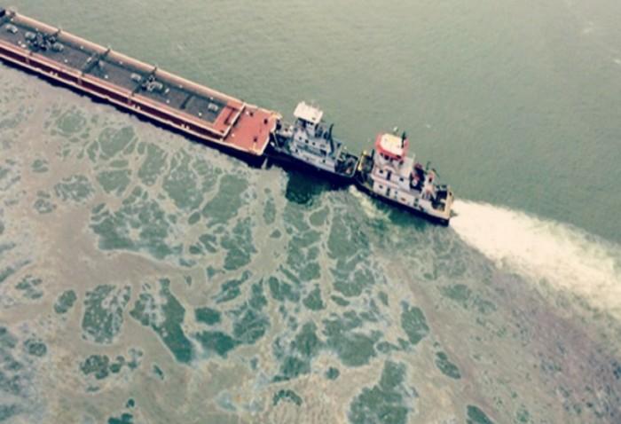 vertido petróleo