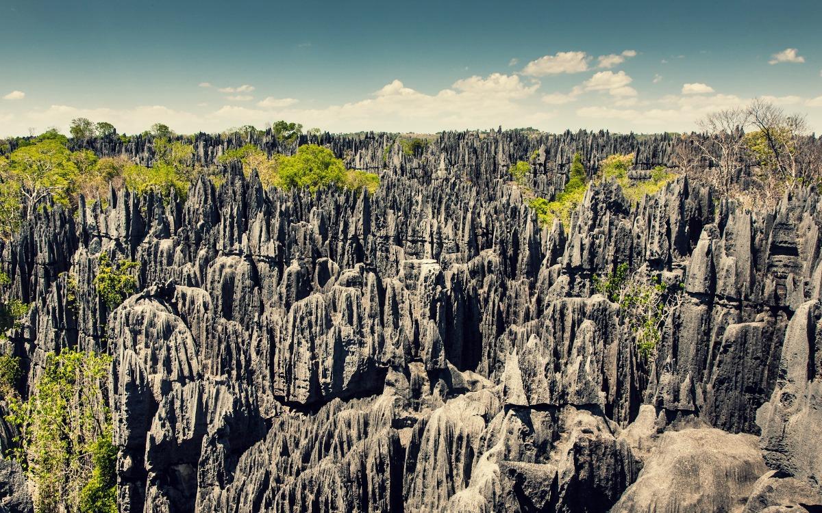 El bosque de piedra de Madagascar