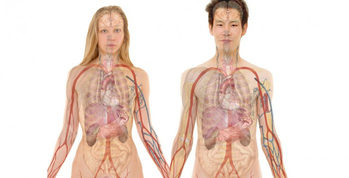 limpieza de hígado natural